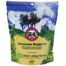 Silver Lining Herbs 24 Immune Support 60 Day Supply - TB