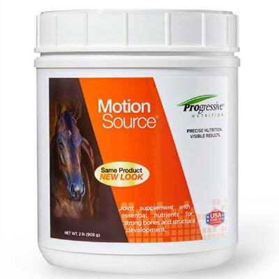Progressive Motion Source 2 lb
