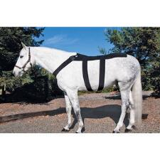 Ice Horse Back Blanket - TB