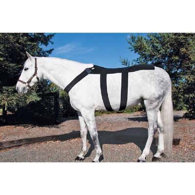 Ice Horse® Back Blanket