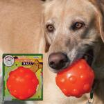 Jolly Pets Jumper Ball 4 Inch - TB