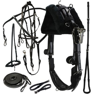 Protecto Standard Harness