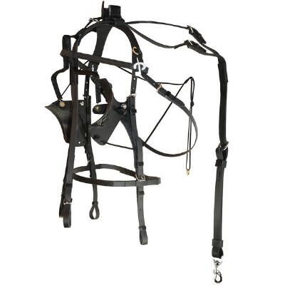 Protecto Pull-Up Pull-Down Bridle Kant See Back