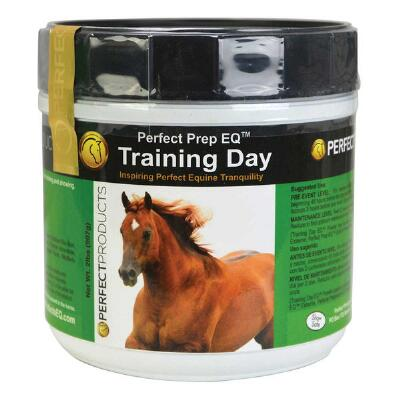 Perfect Prep Training Day Powder 2 lb