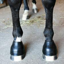 Acavallo Anatomic No Turn Gel Hoof Boot - Pair - TB