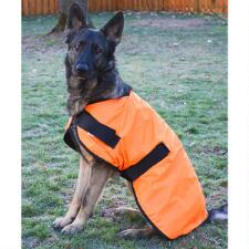Hunter Safety Dog Blanket  - TB