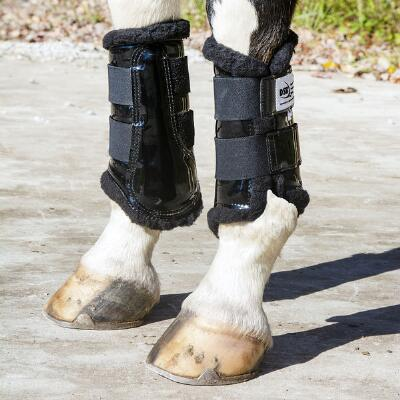 DSB Black Dressage Sport Boot