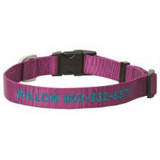Weaver Custom Embroidery Snap N Go Dog Collar - TB