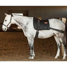 Equicore Complete Equiband System - TB
