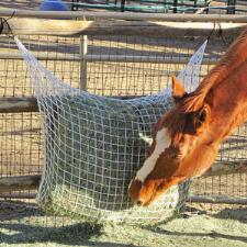 Freedom Feeder Extended Day Hay Net 1inch Netting - TB