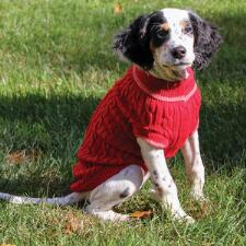 Dog Classic Cable Sweater Red - TB