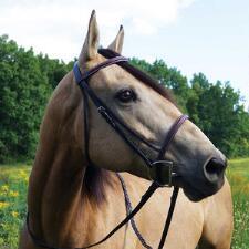 Gatsby English Bridle Raised Fancy Stitched Havana - TB