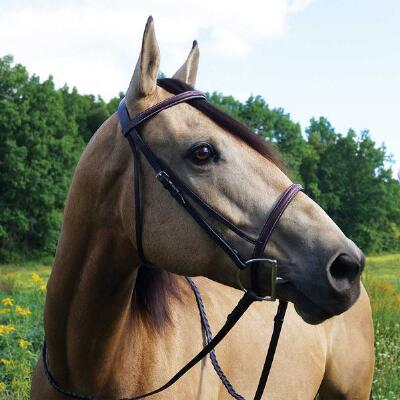 Gatsby English Bridle Raised Fancy Stitched Havana