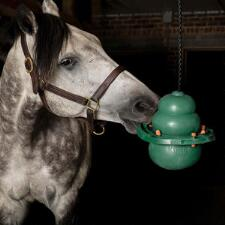 Kong Equine Hanging Kit with Treat Ring - TB