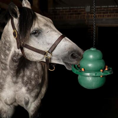 Kong Equine Hanging Kit with Treat Ring