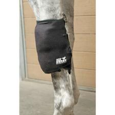 Ice Horse Knee Wrap - TB
