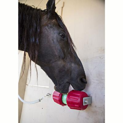 Horsemens Pride Jolly Jumbo Lick Toy and Treat Holder