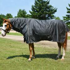 Olympia 1680D Heavyweight Turnout Blanket with Detachable Neck Cover - TB