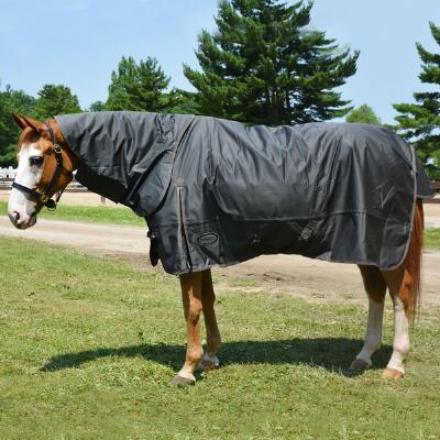 Olympia 1680D Heavyweight Turnout Blanket with Detachable Neck Cover