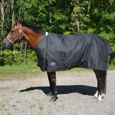 Glacier 600D Heavyweight Turnout Blanket