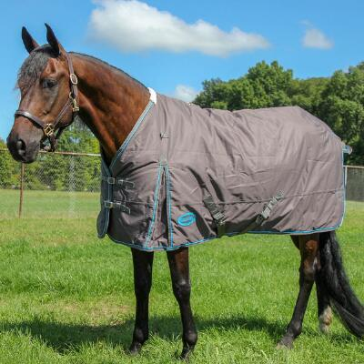 Klondike 600D Ripstop Heavyweight Turnout Blanket