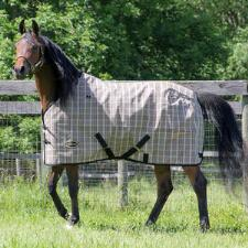 Plaid Mesh Fly Sheet - TB