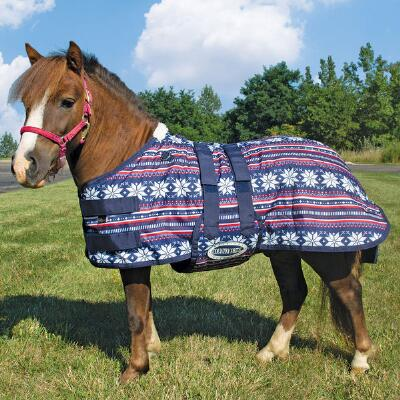 Country Pride 600D Miniature Horse 200gm Bellyband Turnout Blanket