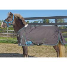 Country Pride 600D Miniature Horse 200gm Turnout Blanket - TB
