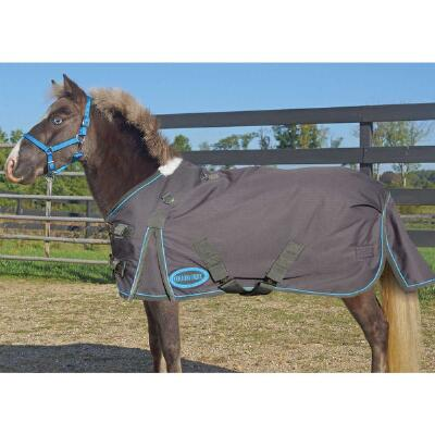 600D Miniature Midweight Turnout Blanket