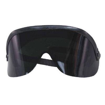 Protecto One Piece Goggles