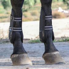 Professional's Choice Pro Performance Jumping Boots - TB