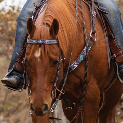 Cashel Angel Fire Beaded Browband Headstall