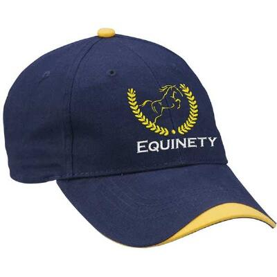 Equinety Promotional Hat