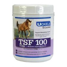 Uckele TSF-100 Thyroid Supplement 2 lb - TB