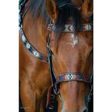 Circle Y Southwestern Beaded Browband Headstall - TB